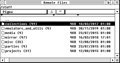 Zrzut ekranu: okno programu Litchi. Woknie widać listę folderów znajdujących się naserwerze FTP.